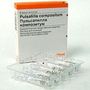 Купить Пульсатилла композитум цена