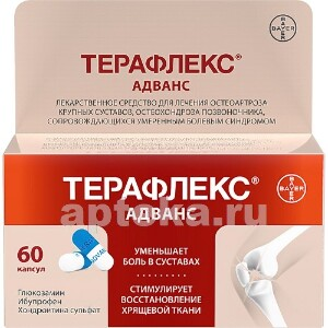 Купить ТЕРАФЛЕКС АДВАНС N60 КАПС цена